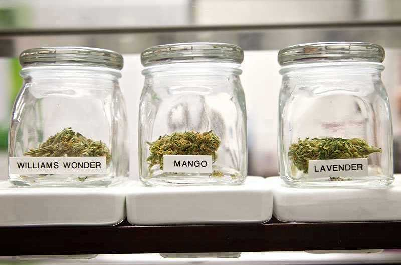 REVIEW FILE PHOTO - Marijuana businesses will not be allowed to operate within Lake Oswego city limits after voters upheld a ban on pot retailers, growers and producers.