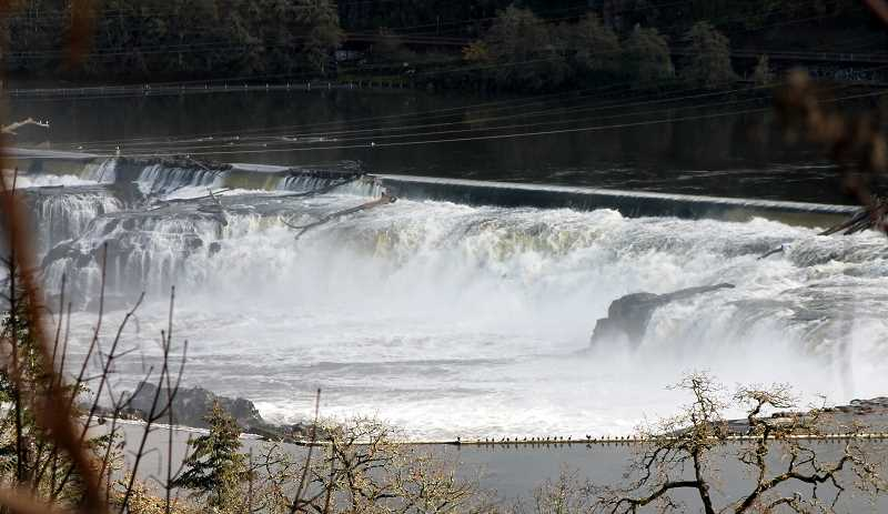TIDINGS PHOTO: LESLIE PUGMIRE HOLE - Willamette Falls were an impassable section of the river until the locks were constructed in 1873 to help boats traverse the river for commerce and recreation.