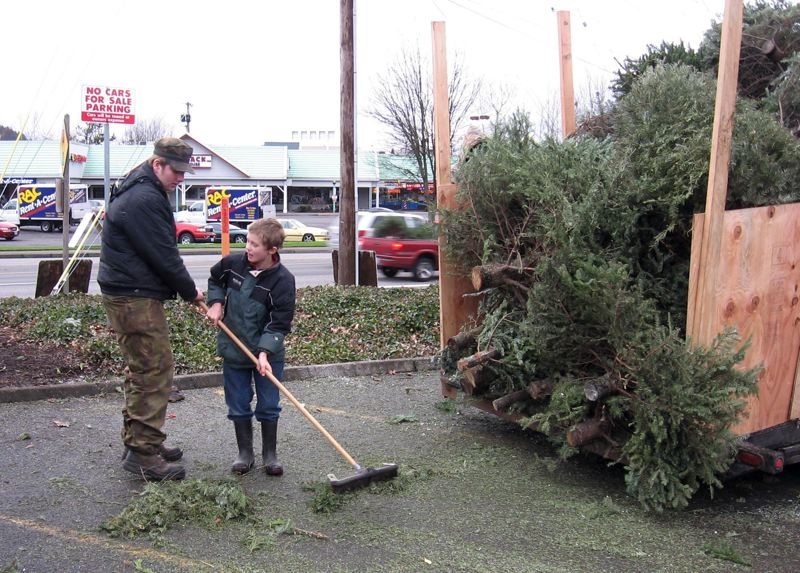 Pamplin Media Group - Boy Scouts picking up Christmas trees in ...