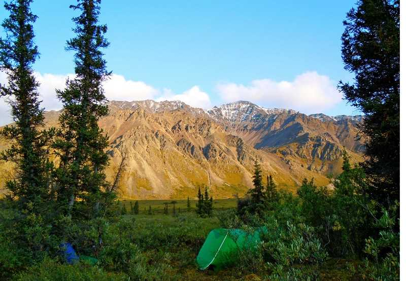 SUBMITTED PHOTO - The Scrantons set up their tent in the same location where they had camped in 1982, in the Sheenjek River Valley. The valley is located on the south slope of the Brooks Range in the south central portion of the 23 million acre Arctic National Wildlife Refuge.