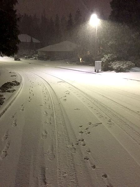TRIBUNE PHOTO: MARK GARBER - Snow accumulated in Gresham Tuesday evening. The region had been predicted to get one to two inches of snow overnight, but the storm 'over-performed,' according to the National Weather Service.