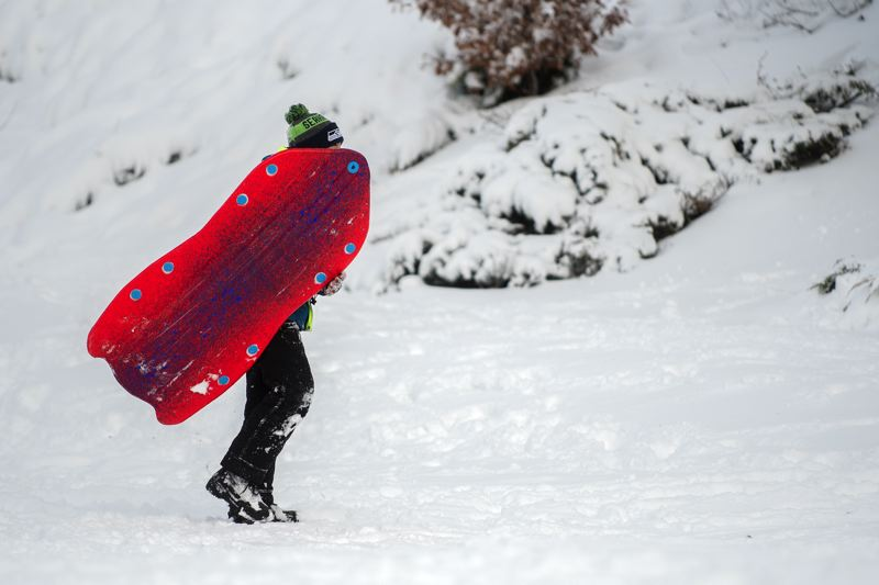 OUTLOOK PHOTO: JOSH KULLA - A sledder heads backu to the top of the hill at Main City Park today.