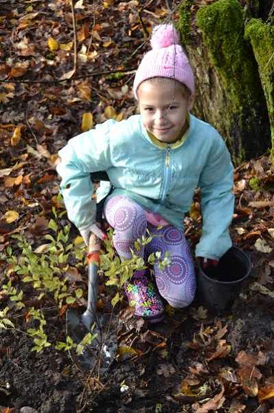 SUBMITTED PHOTO: COURTESY OF ARYA BADIYAN - Jasmine Phelps, 9, beams during the tree-planting event in December.