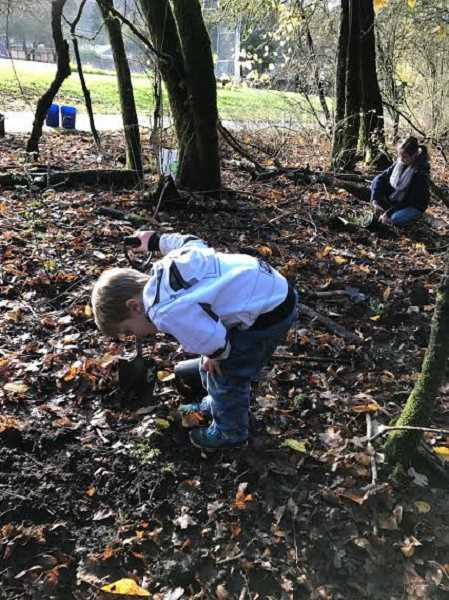 SUBMITTED PHOTO: COURTESY OF ARYA BADIYAN - Oscar Mattersdorff, 7, inspects his handiwork during the Ash Street Virtues Class tree-planting event last month.
