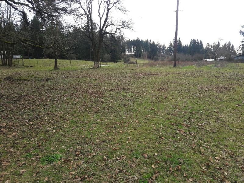 """TIMES PHOTO: MARK MILLER - A view from the northwest corner of the """"central subarea"""" south of the Victoria Gardens neighborhood in Tualatin shows both flat areas that could conceivably support large buildings and roads, as well as steep ridges that would make development challenging in places."""