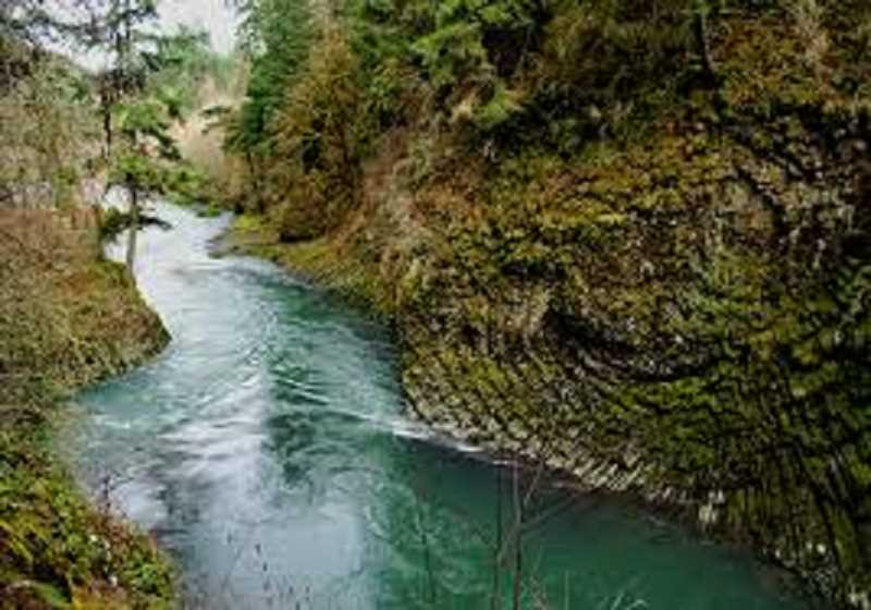 Schrader Introduces bill to preserve Molalla River