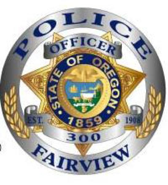 COURTESY GRAPHIC - The following information was compiled from the public records of the Fairview Police Department: