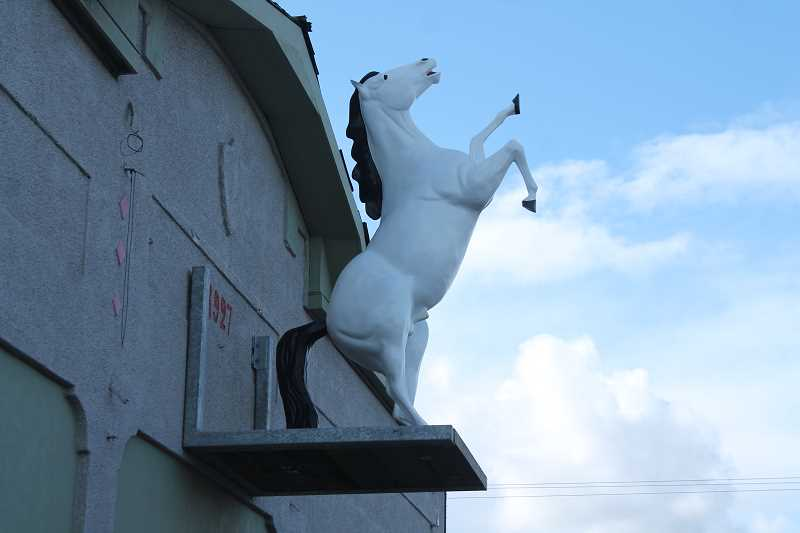 Molalla's White Horse finds its way home