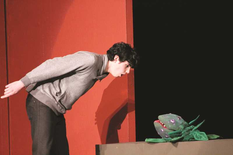 "PIONEER PHOTO: CONNER WILLIAMS - Dominic Baurer, playing Seymour, rehearses the song ""Grow For Me"" from the upcoming Molalla Thespian