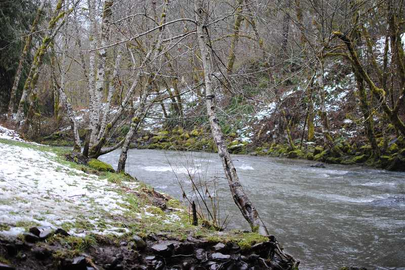 NEWS-TIMES PHOTO: STEPHANIE HAUGEN - Scoggins Creek is running cold and fast this time of year.