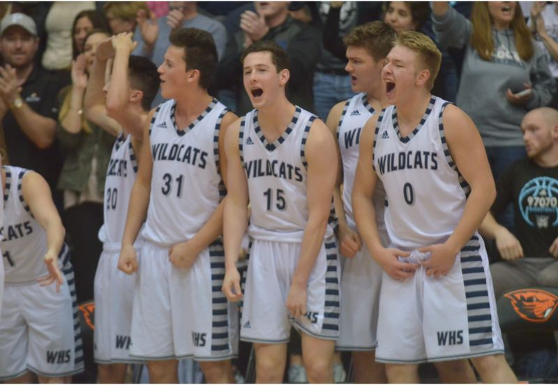 SPOKESMAN PHOTO: COREY BUCHANAN - Wilsonville's bench players cheer their teammates on as a Wildcat victory seemed imminent.