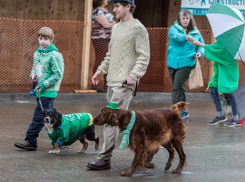 NEWS-TIMES PHOTO: CHASE ALLGOOD - An Irish setter (with hat) is a required participant for an Irish-themed parade.
