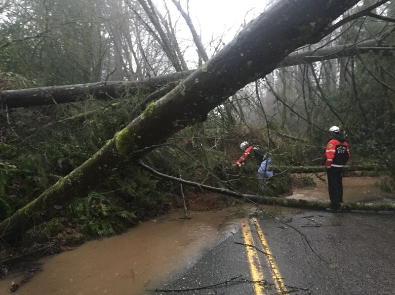 COURTESY PHOTO: PF&R - Portland firefighters checked damage from a Wednesday morning landslide on West Burnside Road.