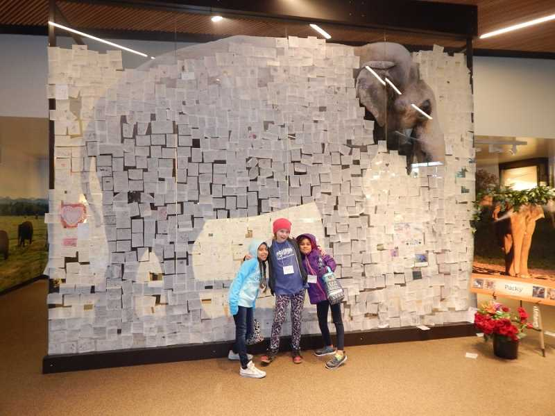 REGAL COURIER PHOTO: BARBARA SHERMAN - Inside Forest Hall in Elephant Lands is a moving tribute to the late Packy, with Post-it notes of sympathy covering most of his life-size photo; posing in front of the photo are (from left) Jennifer, Emma and Rinret.