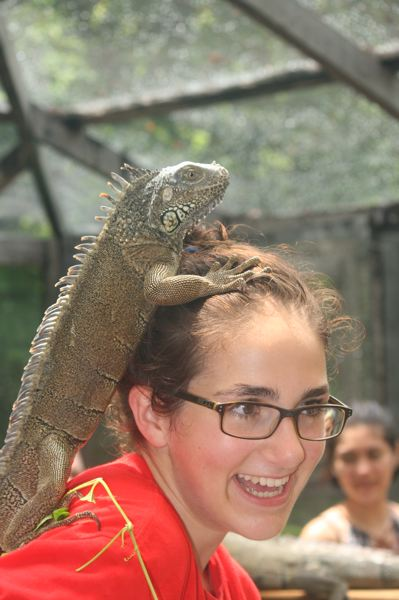 SUBMITTED PHOTOS - Hannah Teel interacts with an iguana at the Belize Iguana Project at the San Ignacio Resort Hotel.