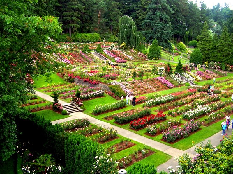 Image result for rose test garden in portland oregon