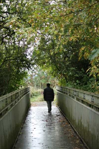 COURTESY OF PAM FARRIS - A footbridge deep in the Tualatin River National Wildlife Refuge provides a quiet place to stroll and contemplate nature.