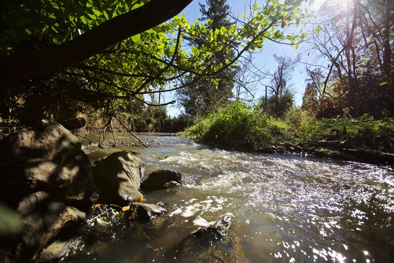 TRIBUNE FILE PHOTO  - Johnson Creek where it passes near the Precision Castparts plant in Southeast Portland.