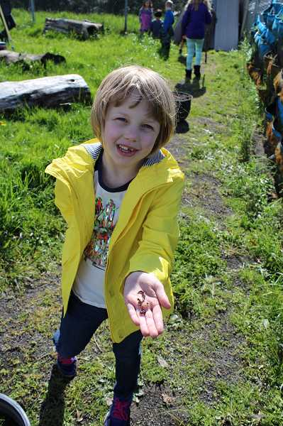 CONNECTION PHOTO: HANNAH RANK - Rieke Garden Club member Ellis shows off her latest finding buried under one of the rocks in the garden: a pair of worms rustled from underground by a recent storm.