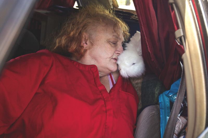 PORTLAND TRIBUNE: JAIME VALDEZ - Cynthia Coffey, 59, is entertained by her pet rabbit that stays in the car with her at Lents Park.
