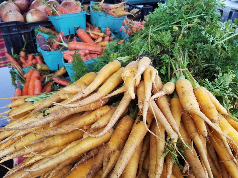 SUBMITTED PHOTO - Colorful carrots are among the many fresh offerings at the Oregon City Farmers Market on Saturdays.