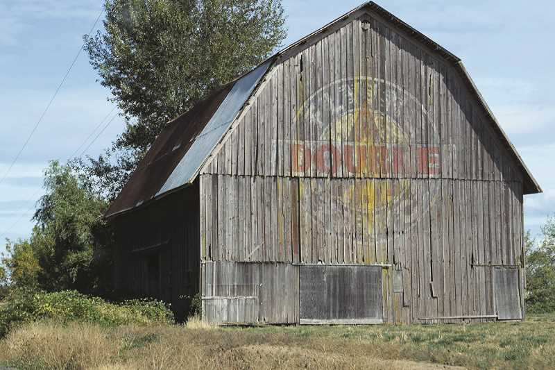 One of the Canby area's most recognizable landmarks, The Gribble Barn, which stood on the same location just off Highway 170 about five miles south of the city limits, was torn down recently by the Gribble Family.