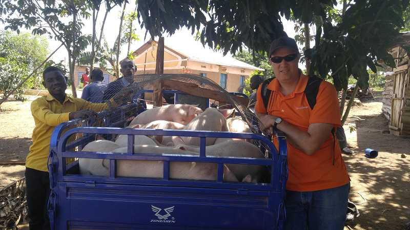 SUBMITTED IMAGE - Brandon Chase of Canby Christian Church with a truck full of pigs ready to go to market.