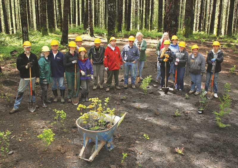 BILL TAYLOR - Volunteers who replanted the former Bobcat Campsite during MRW's April 26, 2014 SOLVE Earth Day River Cleanup and planting event.