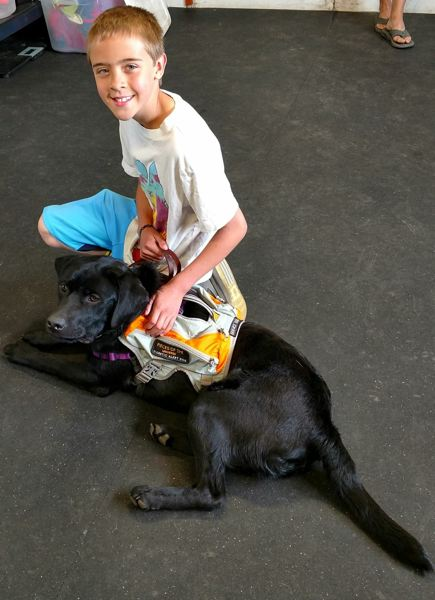 CONTRIBUTED PHOTO - Nolan Jewell smiles while meeting Rio, a diabetic alert service dog trained by Pieces of the Universe in Forest Grove.