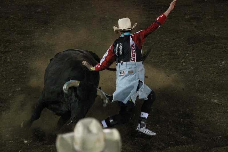 PIONEER PHOTO: CONNER WILLIAMS - 16-year-old Miles Barry took second in the freestyle bullfighting event on Saturday at the Coastal Farm andRanch Challenge of Champions Tour with a score of 84 points.