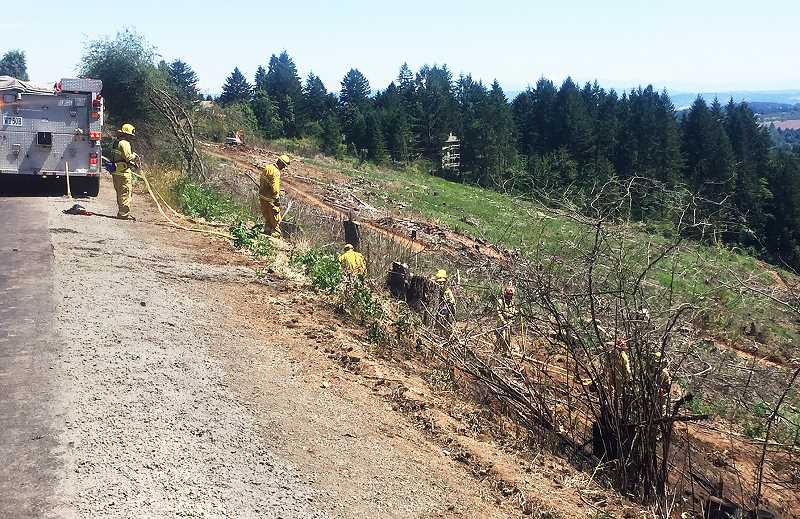 PHOTO COURTESY OF TVF&R - Firefighters mop up after a brush fire that emanated in a slash burn broke out on Saturday on the north side of Chehalem Mountain adjacent to Highway 219.