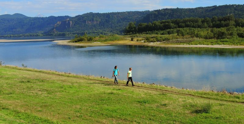 COURTESY: FRIENDS OF THE COLUMBIA GORGE - The nonprofit Friends of the Columbia Gorge is working to acquire the 160-acre Steigerwald Shores, the crown jewel of its Preserve the Wonder campaign, so the land can remain protected from development and open to the public for recreation.