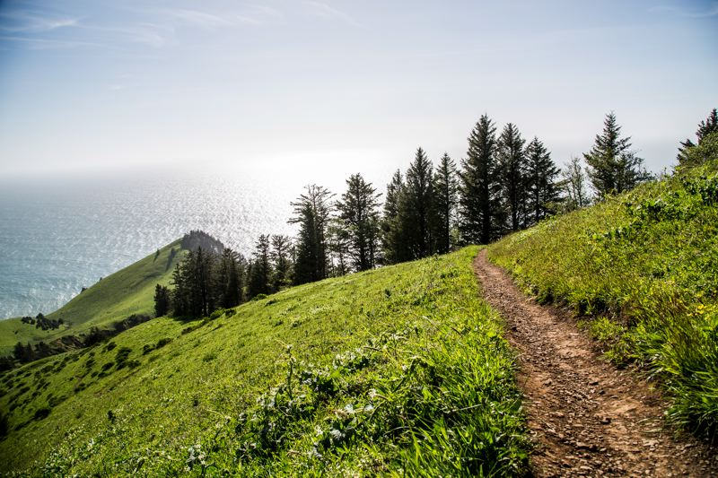 COURTESY THE NATURE CONSERVANCY  - This trail gives a glimpse of the spectacular scenery at Cascade Head.