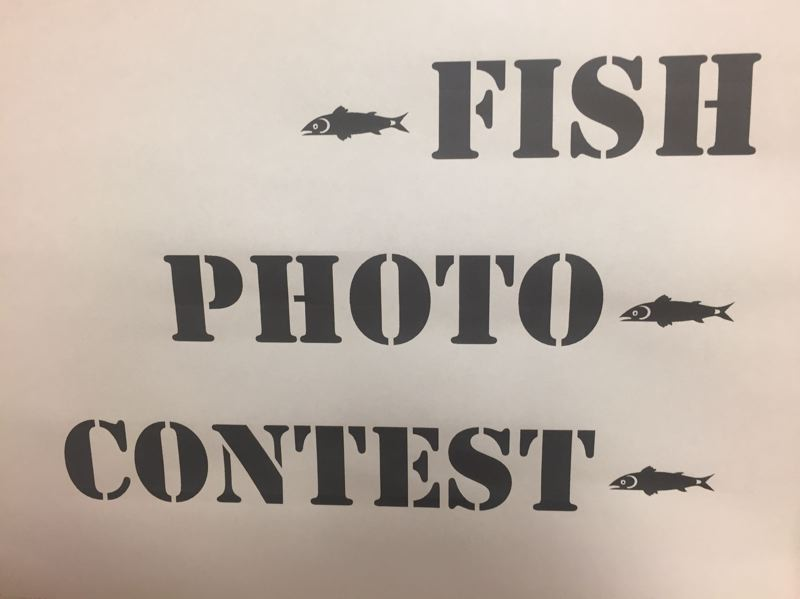 PARIS ACHEN/CAPITAL BUREAU - The 'Fish Photo Contest' sign in Rep. Ken Helm's office in the Oregon Capitol in Salem.