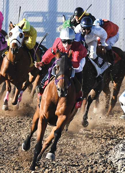 CENTRAL OREGONIAN FILE PHOTO - Horses round the corner and enter the home stretch during a race last year at the Crooked River Roundup Race Meet. Racing begins this week on Wednesday with ladies night and continues through Saturday.