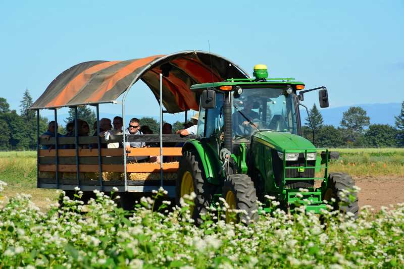 SUBMITTED PHOTOS - Wagon ride farm tours are available every 45 minutes at the NWREC Open House July 19.