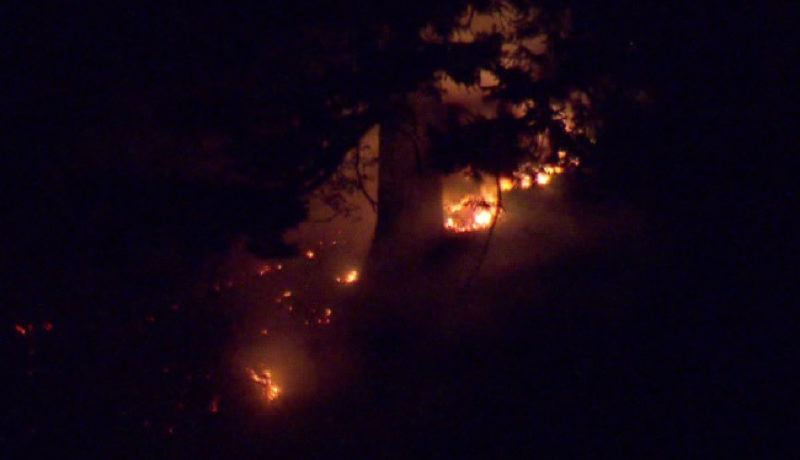 CONTRIBUTED PHOTO: KOIN 6 NEWS - A fire near Oneonta Falls closed the Historic Columbia River Highway Tuesday night.