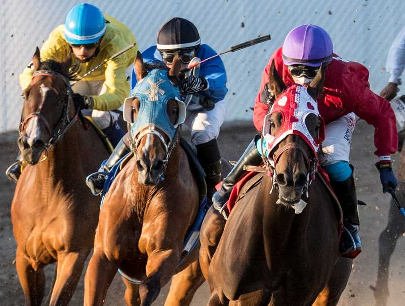 LON AUSTIN/CENTRAL OREGONIAN - Jockeys round the final turn during Friday night's second race at this year's Crooked River Roundup Race Meet. Eduardo Gutierrez-Sosa, not pictured, riding Fay Belle came from behind to win the race, while Jake Samuels on Magna Sweetheart, far right, finished a close second. Samuels won 13 races at the meet, earning jockey of the meet honors.