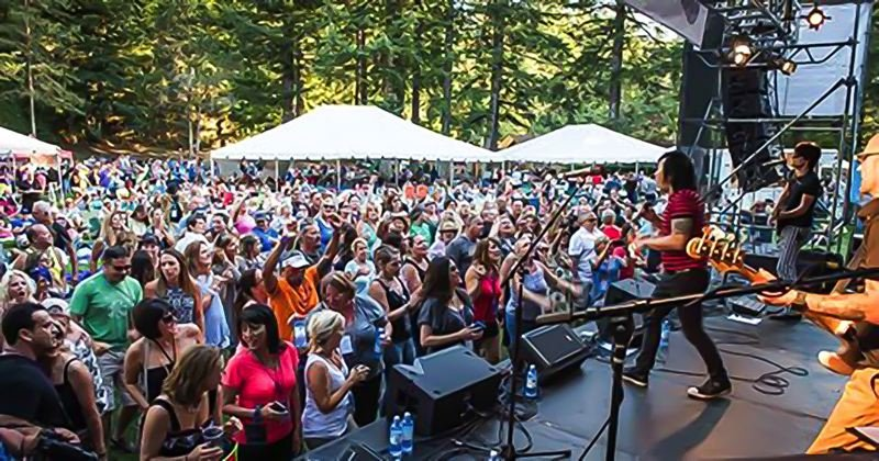 COURTESY PHOTO - This year's Soulful Giving Blanket Concert on Aug. 5 will feature a mix of cover bands and young Northwest artists.