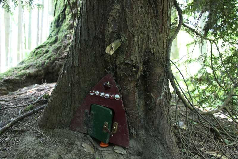CONNECTION PHOTO: HANNAH RANK - Fairy doors at the Maricara Natural Area had been sprinkled throughout the woods since at least 2015, until someone began taking them down last summer.