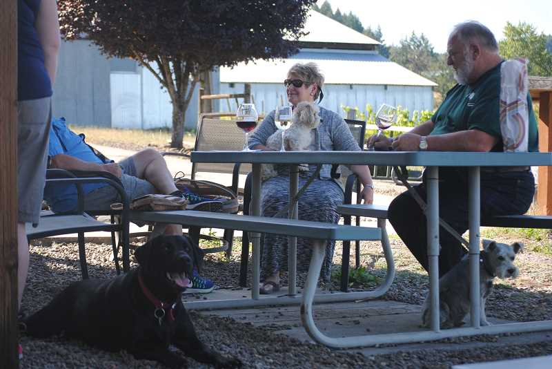 NEWS-TIMES PHOTO: EMILY GOODYKOONTZ - Black lab Lily (lower left)gets some shade on a hot Friday at Plum Hill Vineyards while Jackie Mountain drinks wine holding her dog Jasper in her lap and schnauzer Bella Rue sits near winemaker RJ Lint (right).