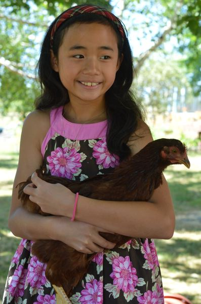 PAMPLIN MEDIA GROUP: CLARA HOWELL - Isabella Loeung, 10, holds one of her family's 20 chickens on their 2-acre land.
