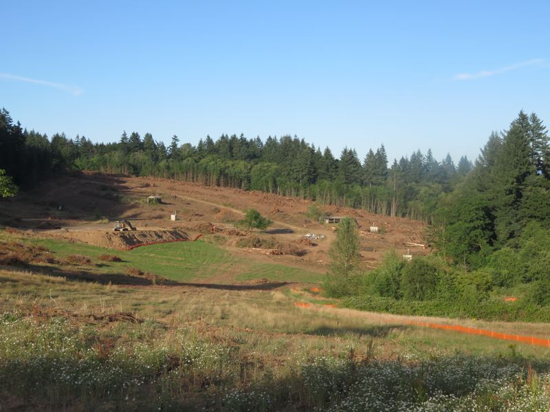 SUBMITTED PHOTO - Happy Valley's City Council approved the clearcutting of former Boy Scouts land near Scouters Mountain Nature Park, despite a study showing the area as one of the last refuges for endangered species.