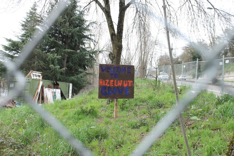 TRIBUNE PHOTO: LYNDSEY HEWITT - Hazelnut Grove is located in North Portland's Overlook neighborhood.