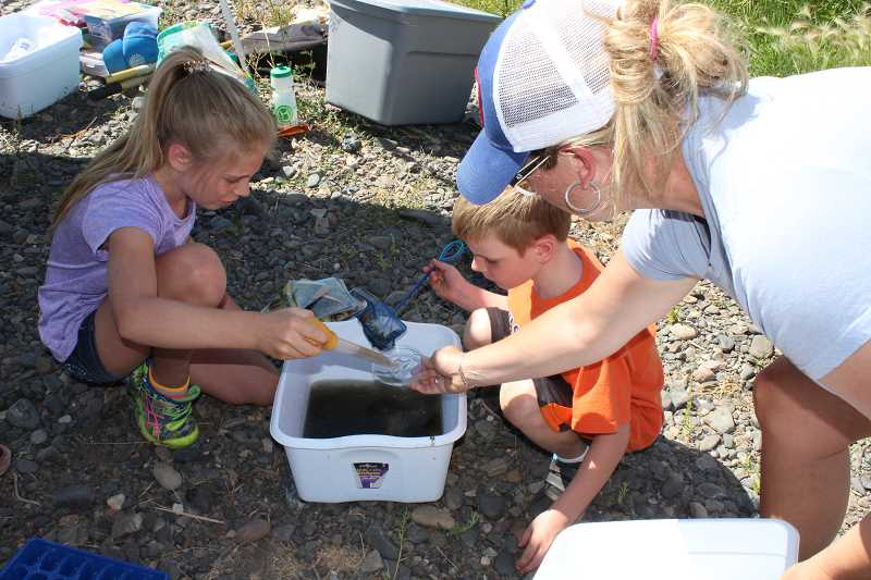 HOLLY SCHOLZ/CENTRAL OREGONIAN  - Jolene Bartolotti, age 9, her 6-year-old brother, Brayden Bartolotti, and their mom, Kim Bartolotti, search for living creatures in a bucket of river water during the Watery Wonders with Discover Your Forest Tuesday morning at the Crooked River Wetlands Complex.