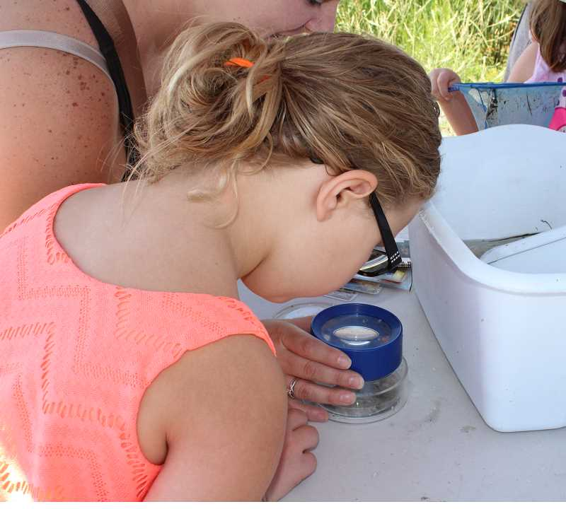 HOLLY SCHOLZ/CENTRAL OREGONIAN  - Six-year-old Reagan Livingston and her mom, Valeri Livingston, of Prineville, use a special magnifying glass to identify an insect.