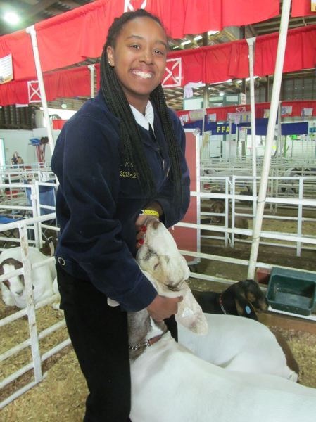PHOTO BY DICK TRTEK - Rex Putnam High School student MaKenzie Pool, 16, said Tucker, a crossbred Boer goat, won third in showmanship at last week's county fair.