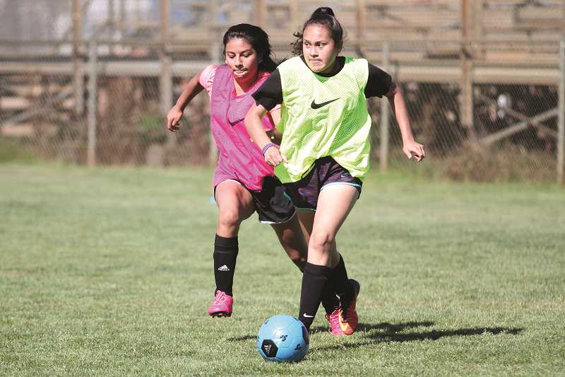 PHIL HAWKINS - With more than 40 girls trying out for the Woodburn girls soccer team, the Bulldogs will be able to field a strong, competitive roster this fall.