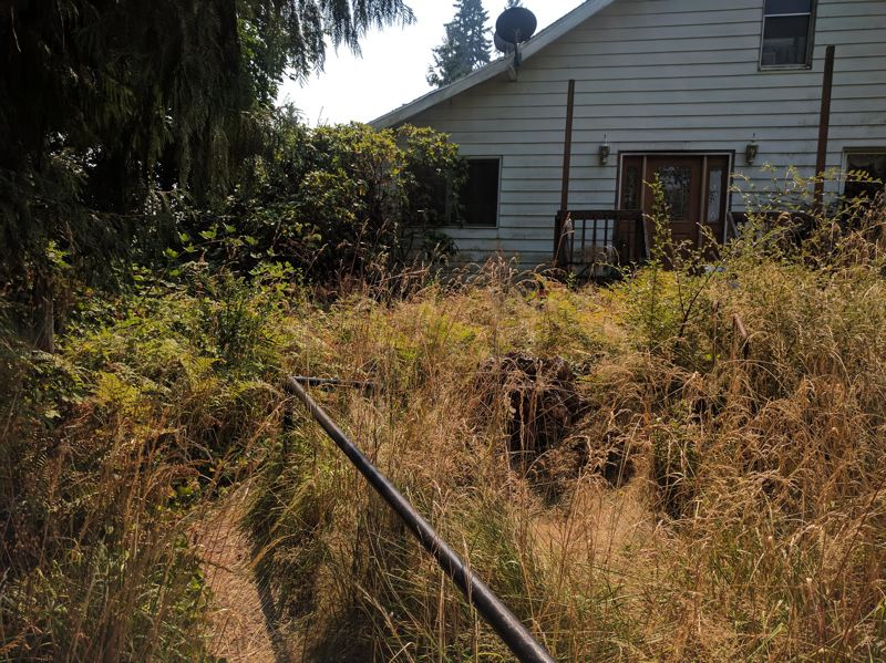 SPOTLIGHT PHOTO: COURTNEY VAUGHN - Weeds and tall grass envelop the walkway of a home on Southwest JP West Road. Neighbors and city officials say the property owner pays enforcement fines, rather than complying with clean-up requests.