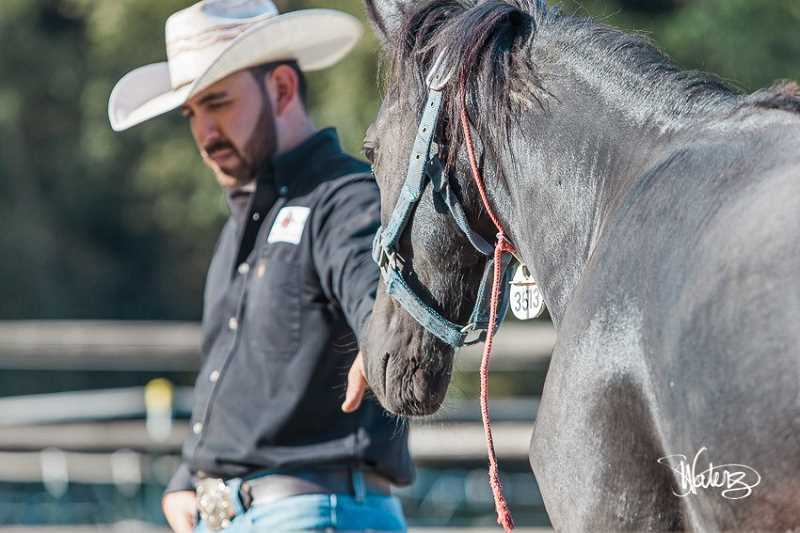 SUBMITTED PHOTO: WILD HORSE MOUNTAIN RANCH - Jonath Robles getting a first touch with a mustang mare. Robles is a U.S. Champion Colt Starter who gives demonstrations on how togentle a wild mustang.